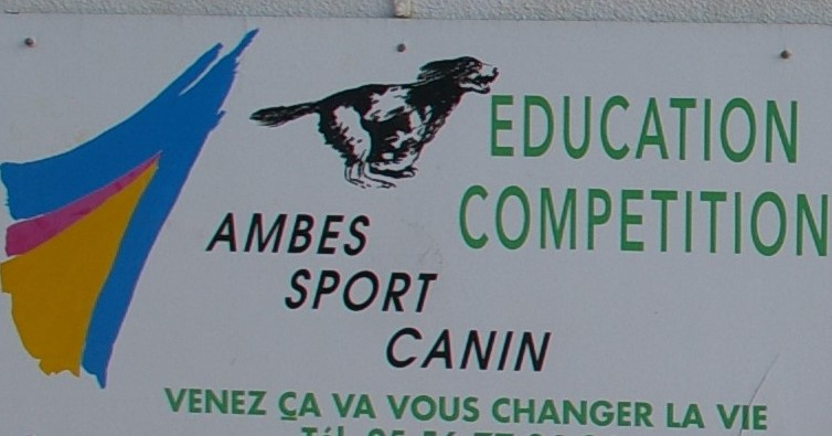 AMBES SPORT CANIN
